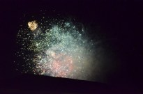 Otherworldly Fireworks (9)
