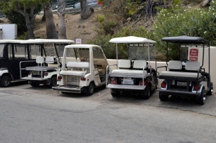 Rent Another Golf Cart