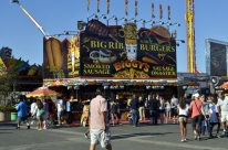Calories at the County Fair (16)