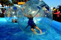 Fun Times at the County Fair (1)