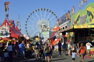 Fun Times at the County Fair (11)