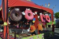 Fun Times at the County Fair (15)
