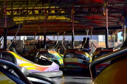 Fun Times at the County Fair (19)