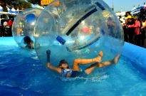 Fun Times at the County Fair (2)