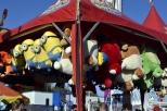 Fun Times at the County Fair (24)