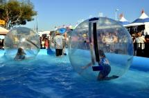 Fun Times at the County Fair (3)