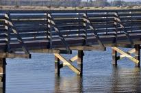 Bolsa Chica Wetlands (8)