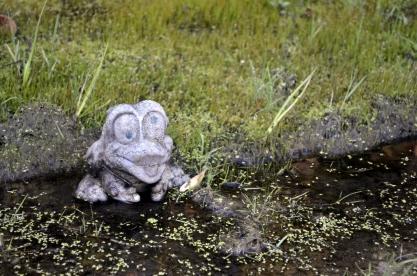 Random frog statue
