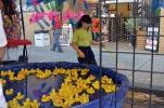 Orange International Street Fair (7)