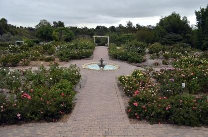 Fountain in the rose garden