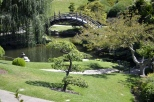 Hot Afternoon, Cool Garden Paths (8)