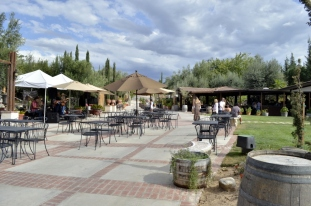 Southern California's Wine County (12)