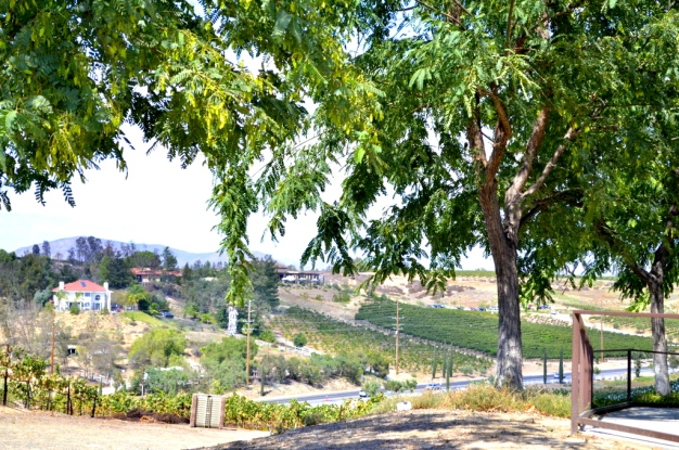 Southern California's Wine County (6)