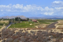 Southern California's Wine County (8)