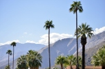 We Walked Palm Springs to Fight AIDS (12)