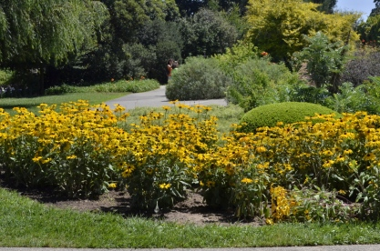 Huntington's Garden Colors (9)