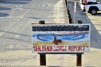 Seal Beach After the Rain, part 1 (5)