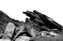 Desert Black and Whites (11)