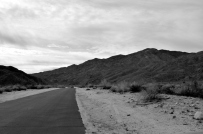 Desert Black and Whites (3)