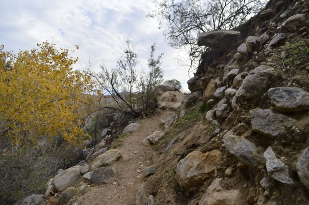 Hiking Andreas Canyon, Part 2 of 2 (1)