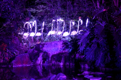 Los Angeles Zoo Holidays Lights (6)
