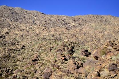 Hiking the Lykken Trail (12)