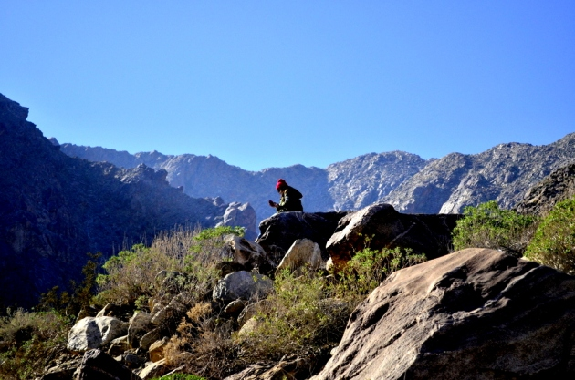 Tahquitz Canyon Texter