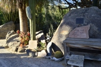 Moorten's Botanical Garden, part 1 (2)