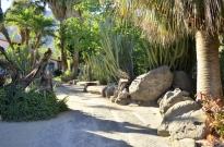 Moorten's Botanical Garden, part 1 (3)