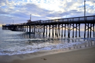 Newport Beach Pier as Subject (4)