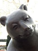 A happy bear