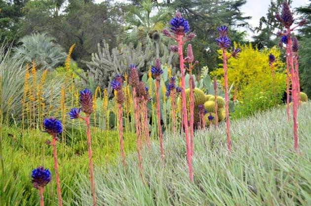 Whimsical Garden Scene