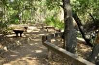 Hiking Oak Canyon Nature Center (18)