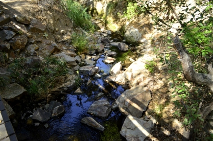 Hiking Oak Canyon Nature Center (19)