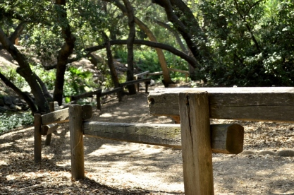 Hiking Oak Canyon Nature Center (22)