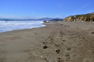 On the beach at Cambria