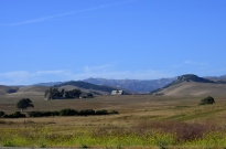 Ranch south of Cambria