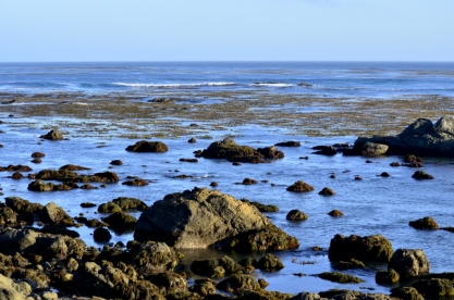 View somewhere along the coast north of Cambria