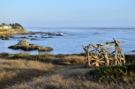 Cambria State of Mind, part 6 (10)