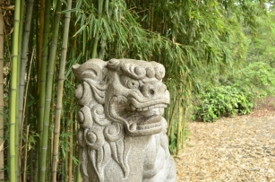 Guard of Huntington's Bamboo (1)
