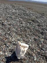 My canvas bag among endless rocks at Cambria