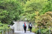 Portland Rose Garden, part 1 (5)