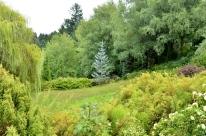 Portland Rose Garden, part 1 (7)