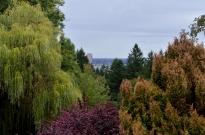 View towards downtown Portland