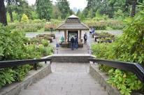 Portland Rose Garden, part 2 (3)