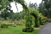 Portland Rose Garden, part 3 (14)