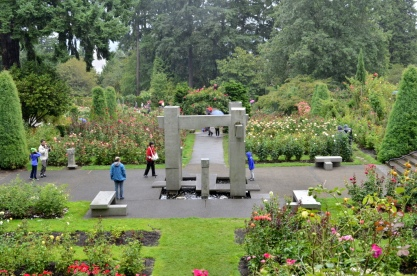 Portland Rose Garden, part 3 (9)