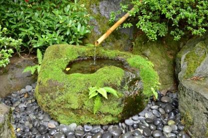 Portland's Japanese Garden, part 1 (1)