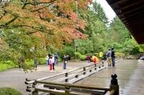 Portland's Japanese Garden, part 1 (2)