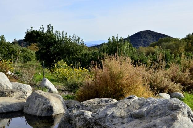 An Autumn Day in Oak Glen (12)